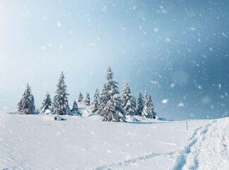 Seasonal Winter